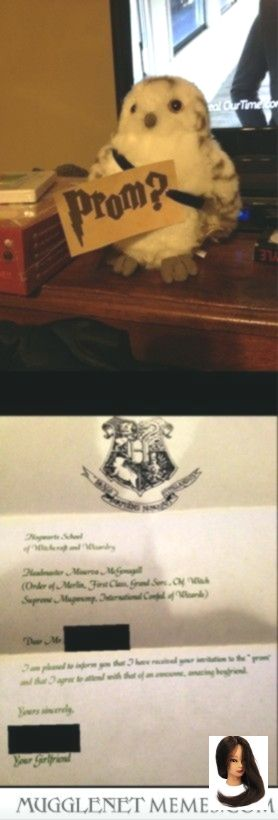How I asked my friend to prom and she accepted in a very Harry Potter-esque way #homecomingproposalideas