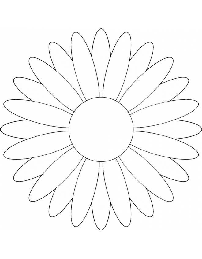 Disegno Di Margherita Da Colorare Margherite Disegno Fiori