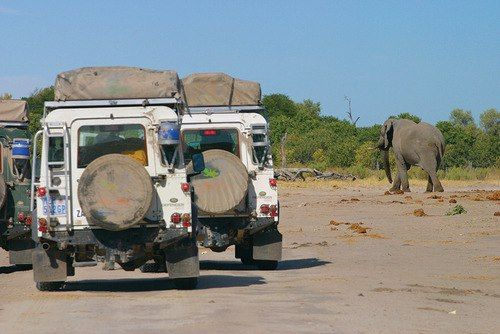 Land Rover In Africa Its Natural Environment Overland Vehicles