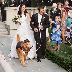There S Only One Thing We Love More Than Bachelorette Parties And That Is Cute Dogs In Weddings Here How To Incorporate Your Puppies Down The Aisle