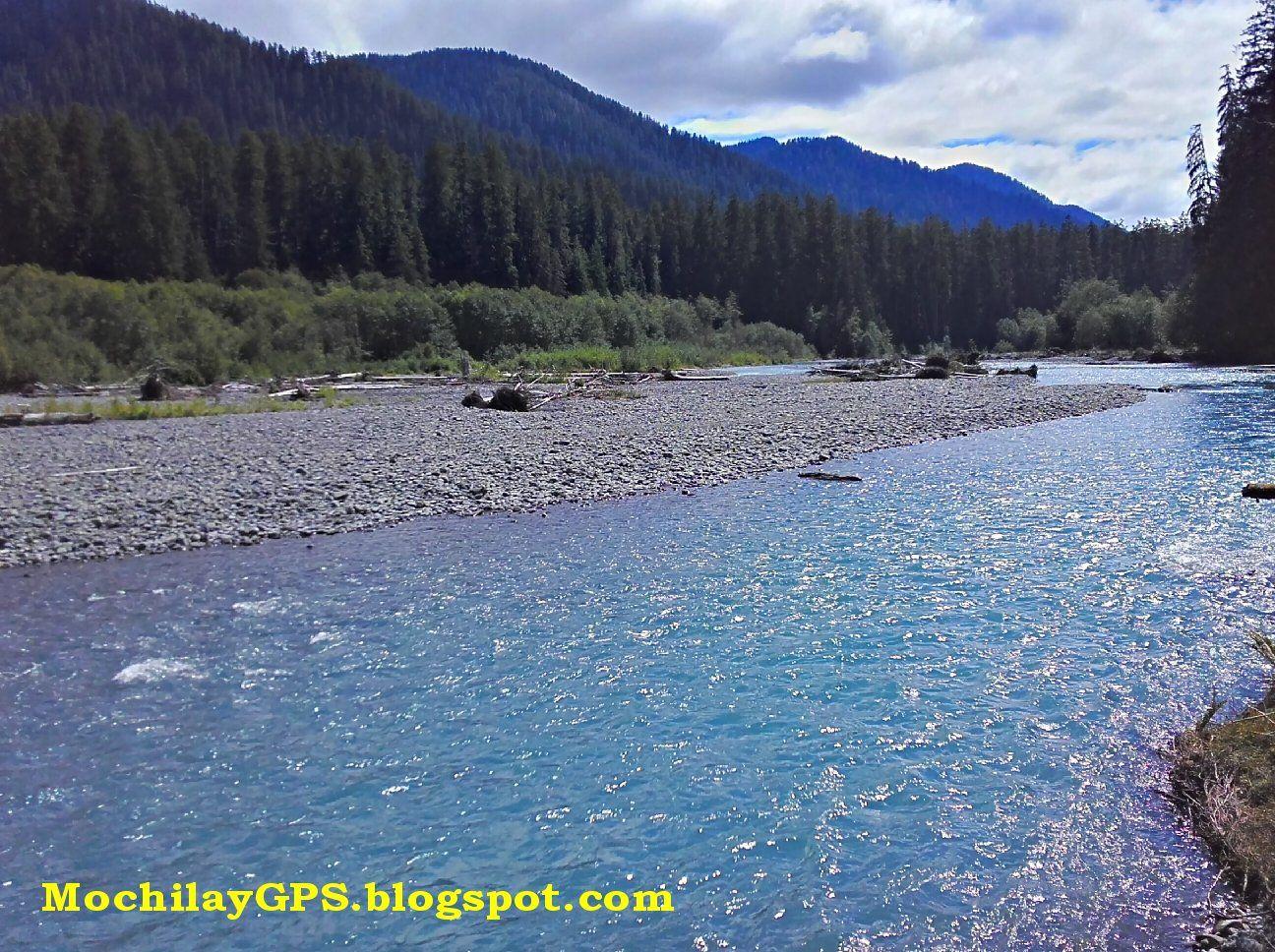 El Parque Nacional Olympic , en el estado de Washington, tiene una particularidad muy especial y es la de estar conformado por tres hábitat...