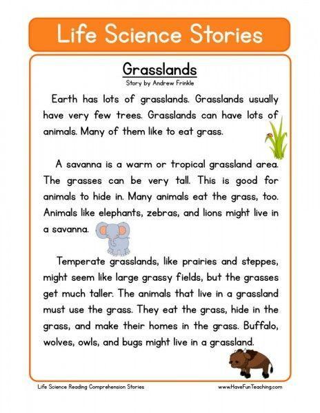 reading comprehension worksheet grasslands english. Black Bedroom Furniture Sets. Home Design Ideas