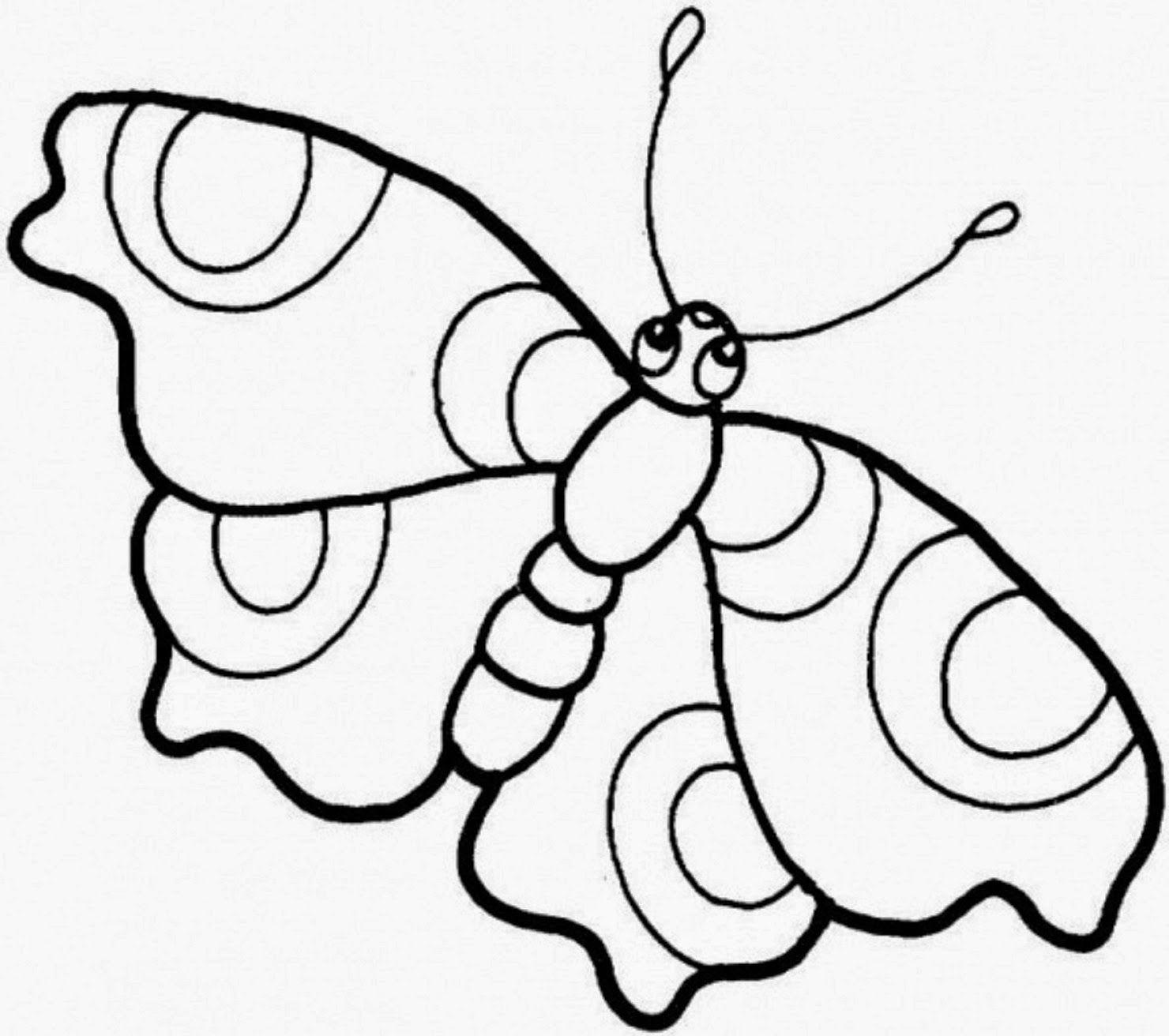 Beautiful Colour Butterflies Drawing Hd Wallpaper