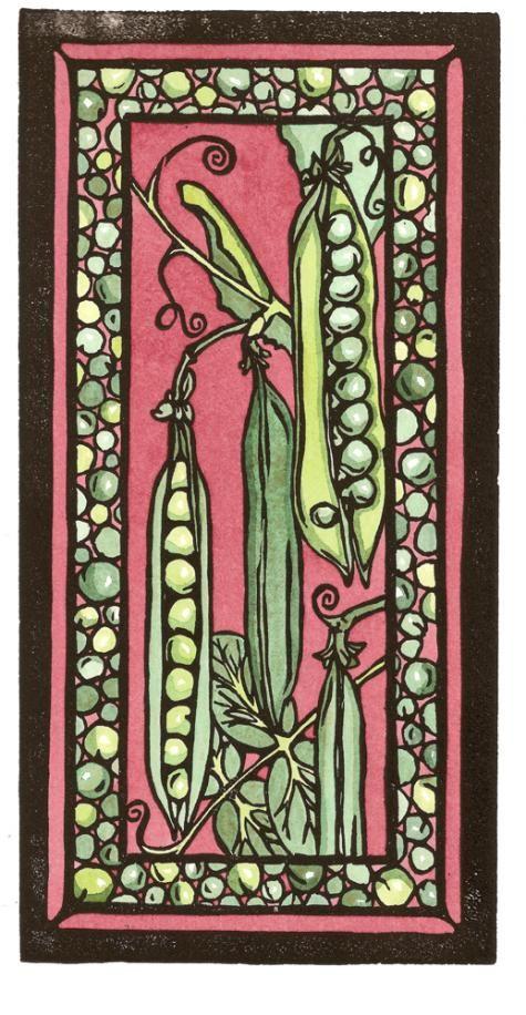 Peas #2 - Sarah Angst Original Image - Vegetable & Garden Art - created in Bozeman, Montana. www.sarahangst.com #sarahangst