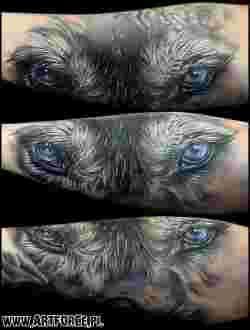 On a trouvé pour vous les plus belles idées de tatouages Loups au monde