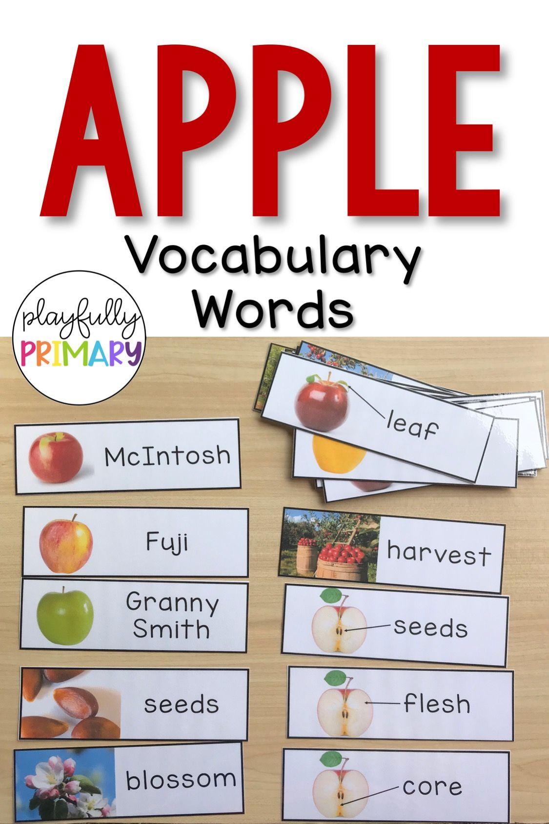 Apple Vocabulary Word Wall Print & D'Nealian Shop