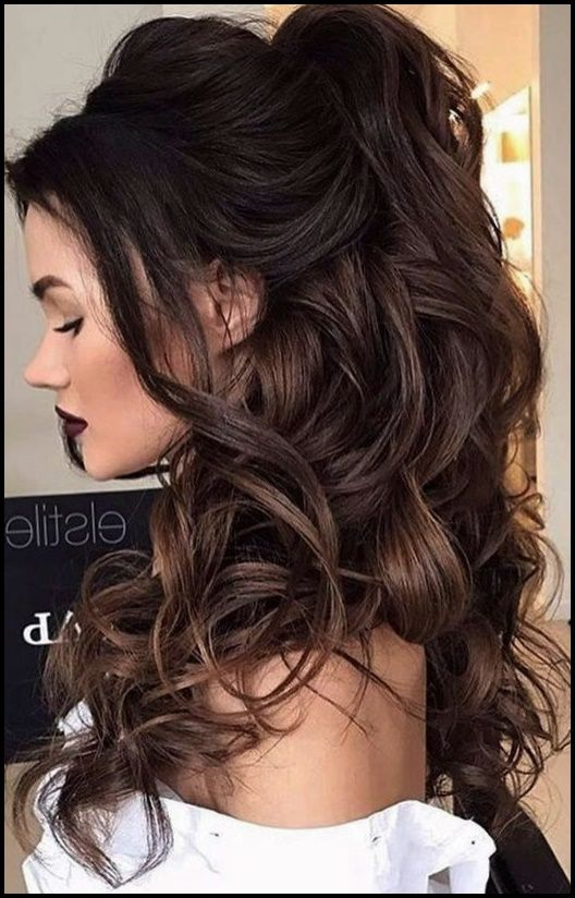 Hairstyles For New Year S Eve 2018 Hair Color Ideas Long Ponytail Hairstyles Stylish Hair Formal Hairstyles For Long Hair