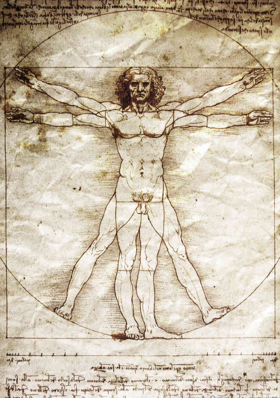 Leonardo Da Vinci - Vetruvian Man | Science | Pinterest | Anatomy ...