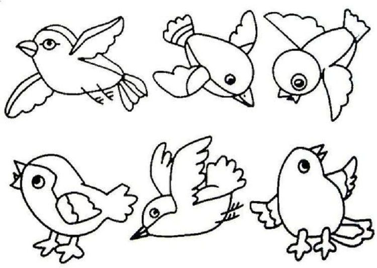 Small Bird Coloring Pages In 2020 Bird Coloring Pages Birds For Kids Animal Coloring Pages
