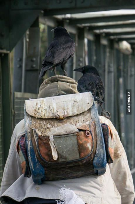 So we have this guy in our town who catches crows and ties them to himself