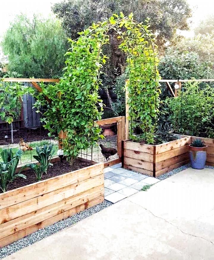 Pin On Vegtable Garden