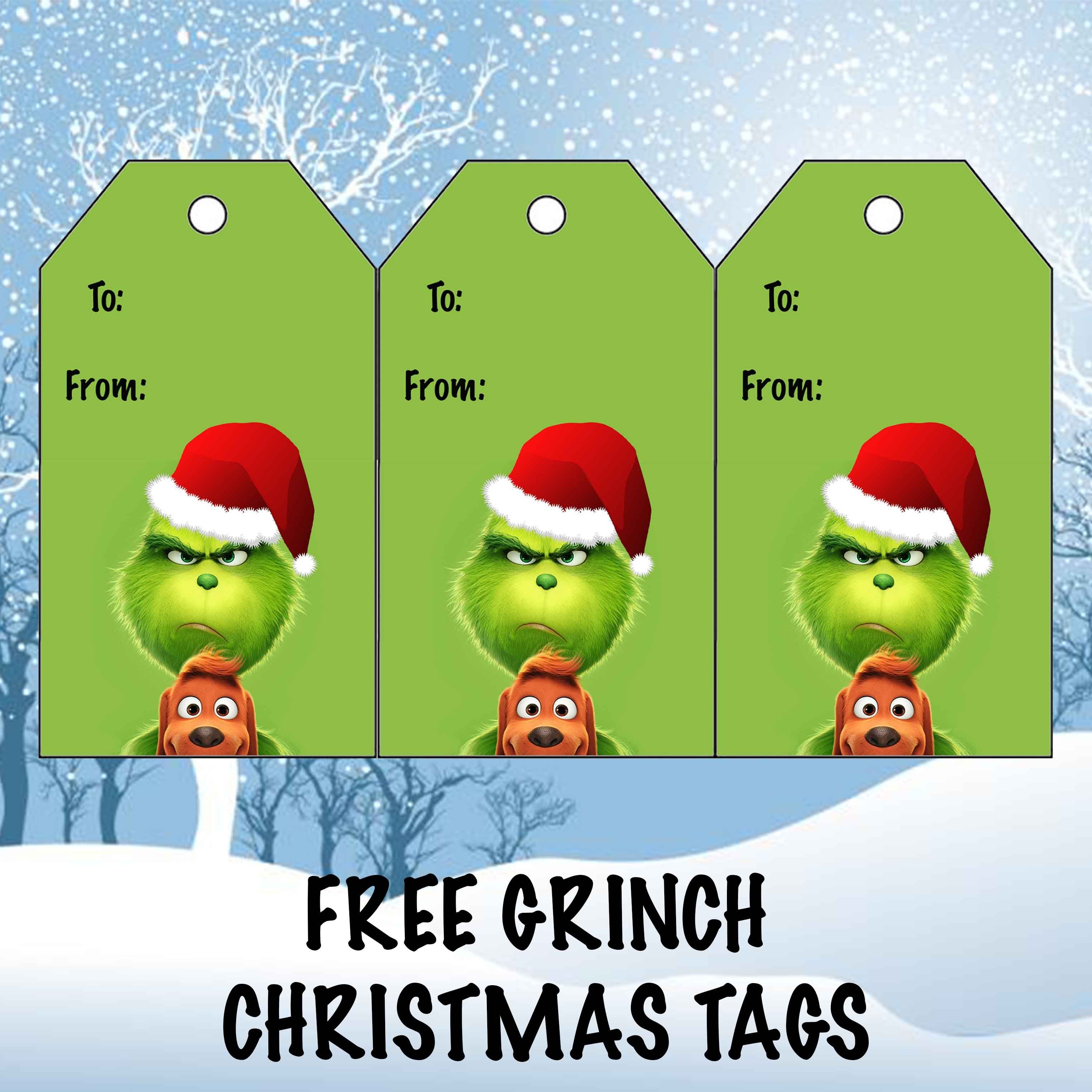 Free Grinch Christmas Gift Tags Grinch Christmas Decorations Grinch Christmas Funny Christmas Tags