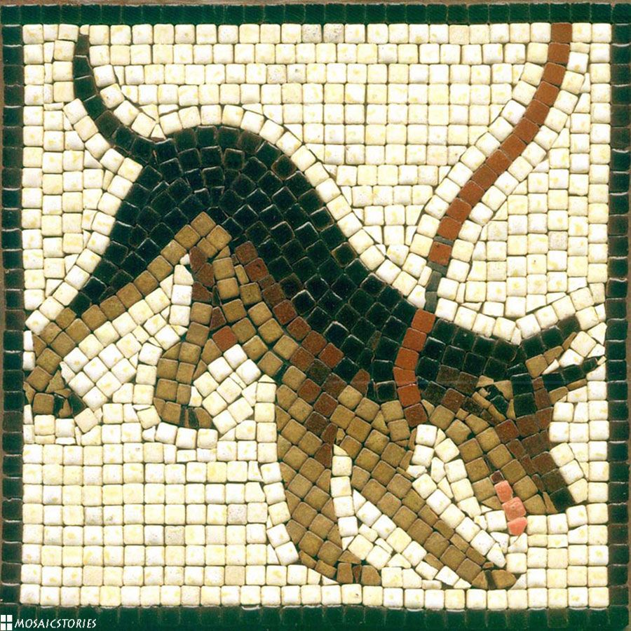 Diy Dog Mosaic With Ceramic Tiles Hunde Mosaik Basteln