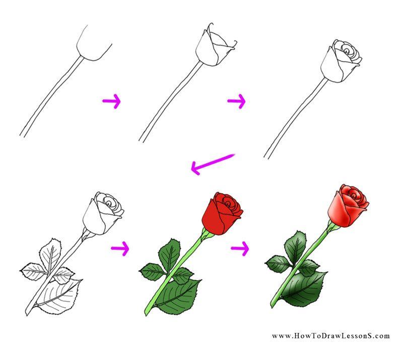 Rose Drawing Tutorial How To Draw Lessons Desenho Passo A Passo Tutorial De Desenho Tecnicas De Desenho