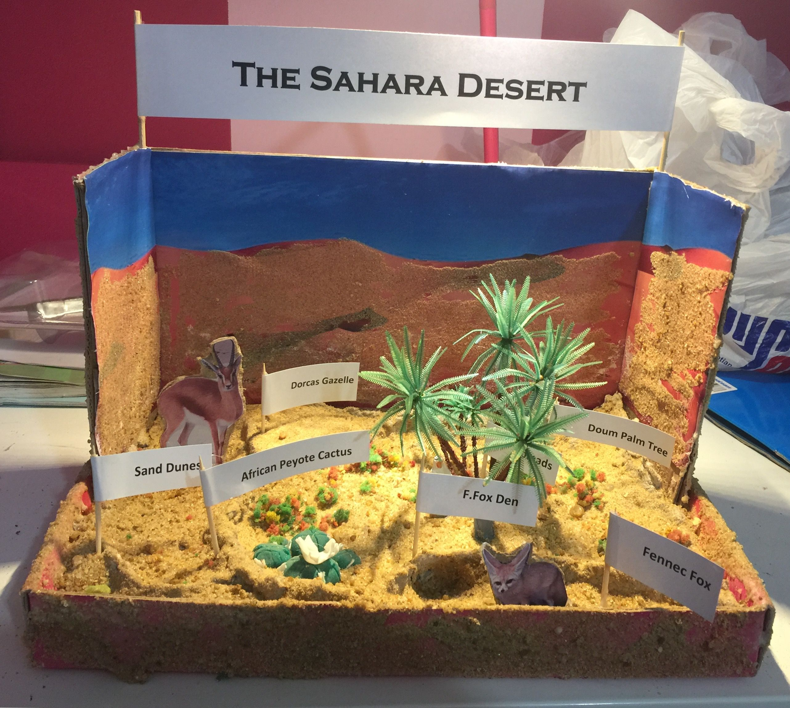 Sahara Desert Diorama