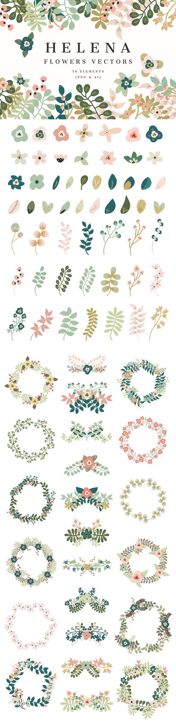 Helena -Flowers Vectors by Cliche Graphique on @creativemarket