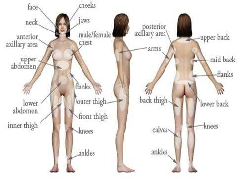 Transgender body parts images-6279