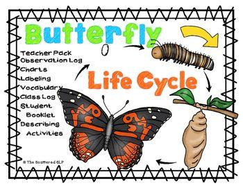 descriptive words for butterflies