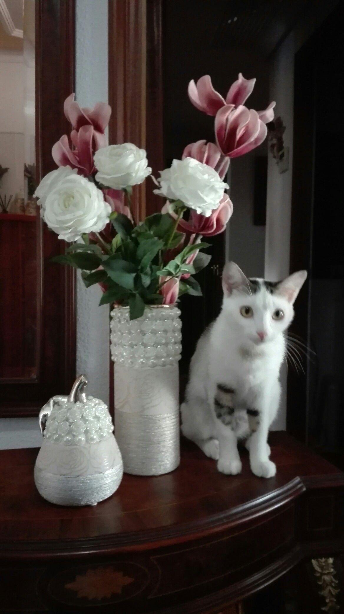 Pin Oleh Dewi Muhfiyanti Di Cat N Flowers Di 2020