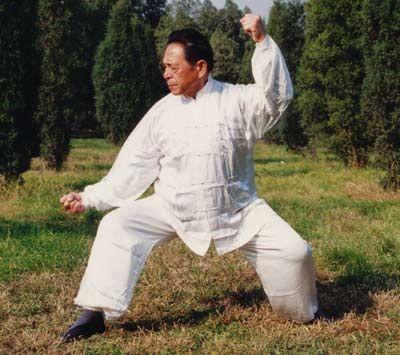 Me Feng Zhiqiang | Wu shu