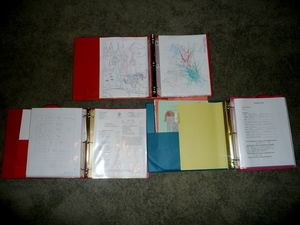 Organize childrens' school memories in binders.  I was planning to scrapbook all of their stuff, but who has the time?  I love this idea.  Simple, no fuss.  I have already started it; just need to get caught up.  I'm going to try to fit at least 2 grades per 2-inch binder and include their school picture, class picture, report cards, certificates, writing samples, favorite artwork, etc, etc, all in sheet protectors to preserve them.
