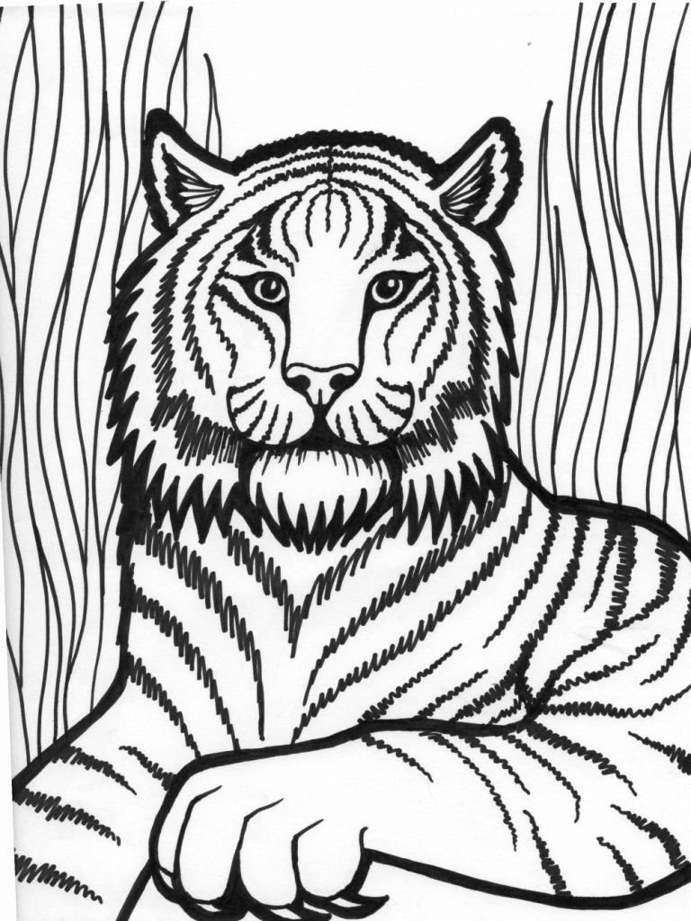 Coloring Animals Online Free In 2020 Lion Coloring Pages Animal Coloring Pages Horse Coloring Pages