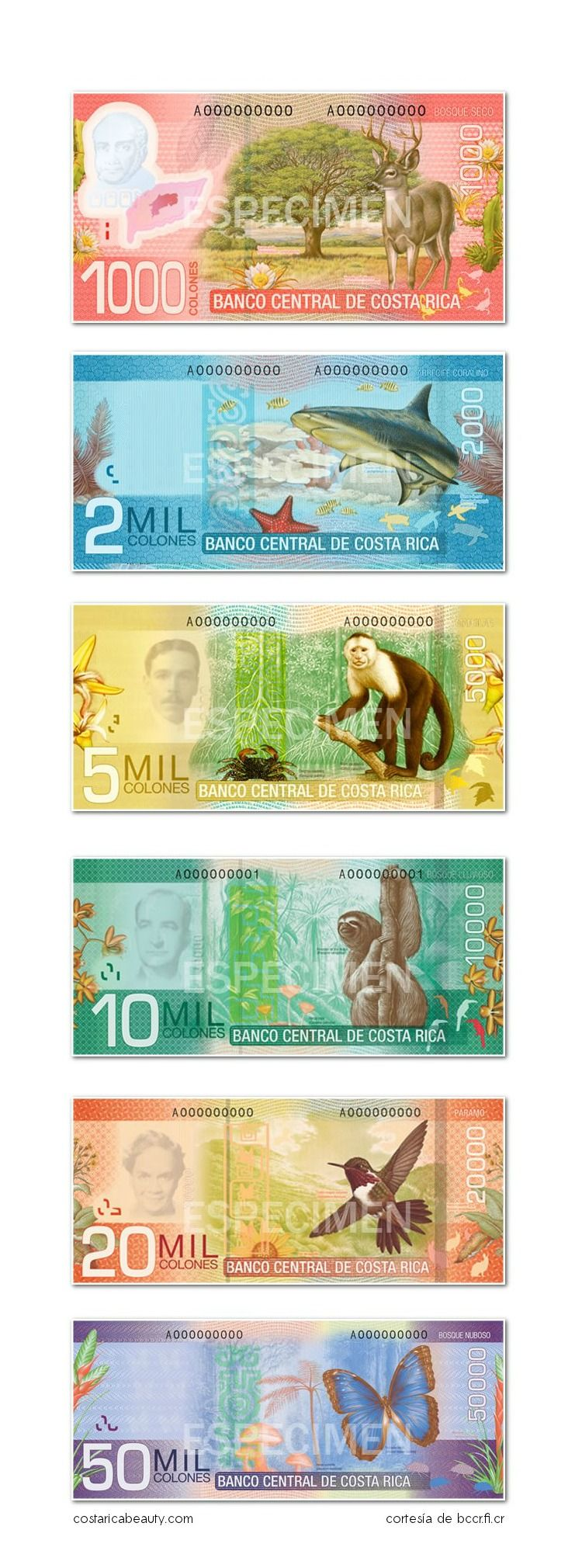 This Is The Costa Rican Money Called Colones Number You See Taken Times 2 To Get Value In American Dollars So For Example Blue Shark