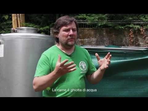 Luca Mercalli: L'impronta idrica degli alimenti | UBO Una Buona Occasione