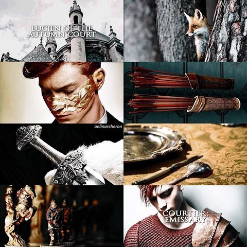 My Baby Fox Aesthetic A Court Of Mist And Fury Book Aesthetic
