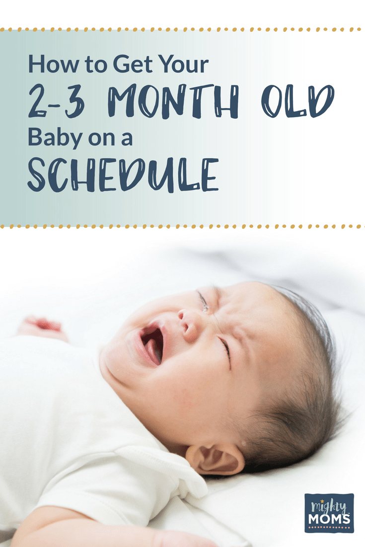how to get your 2 3 month old baby on a schedule free worksheets