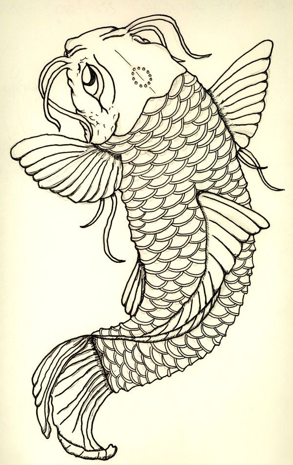 Japanese Koi Fish Tattoo Designs Gallery 14 | Sketches/Lines ...