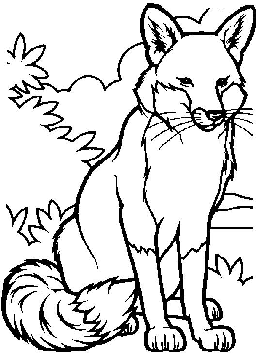 scooter coloring pages 8 17 best images about coloring pages on