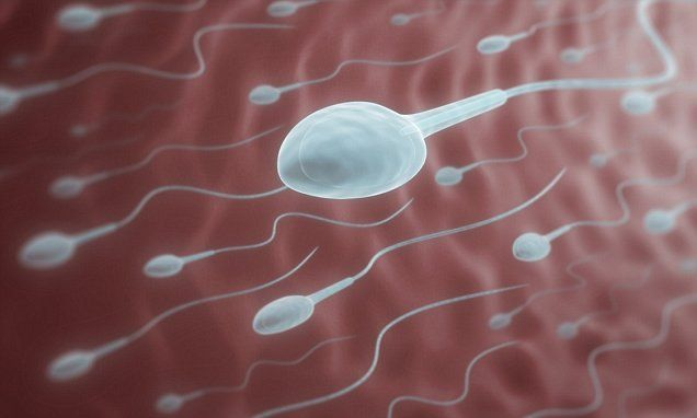 sperm fertile Mother son