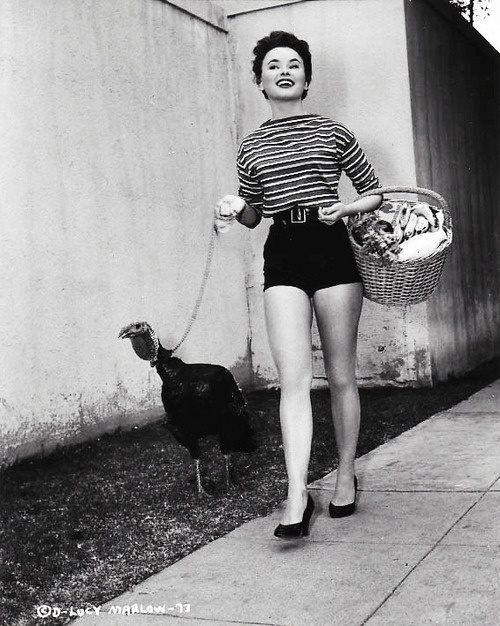 1950s high waisted shorts