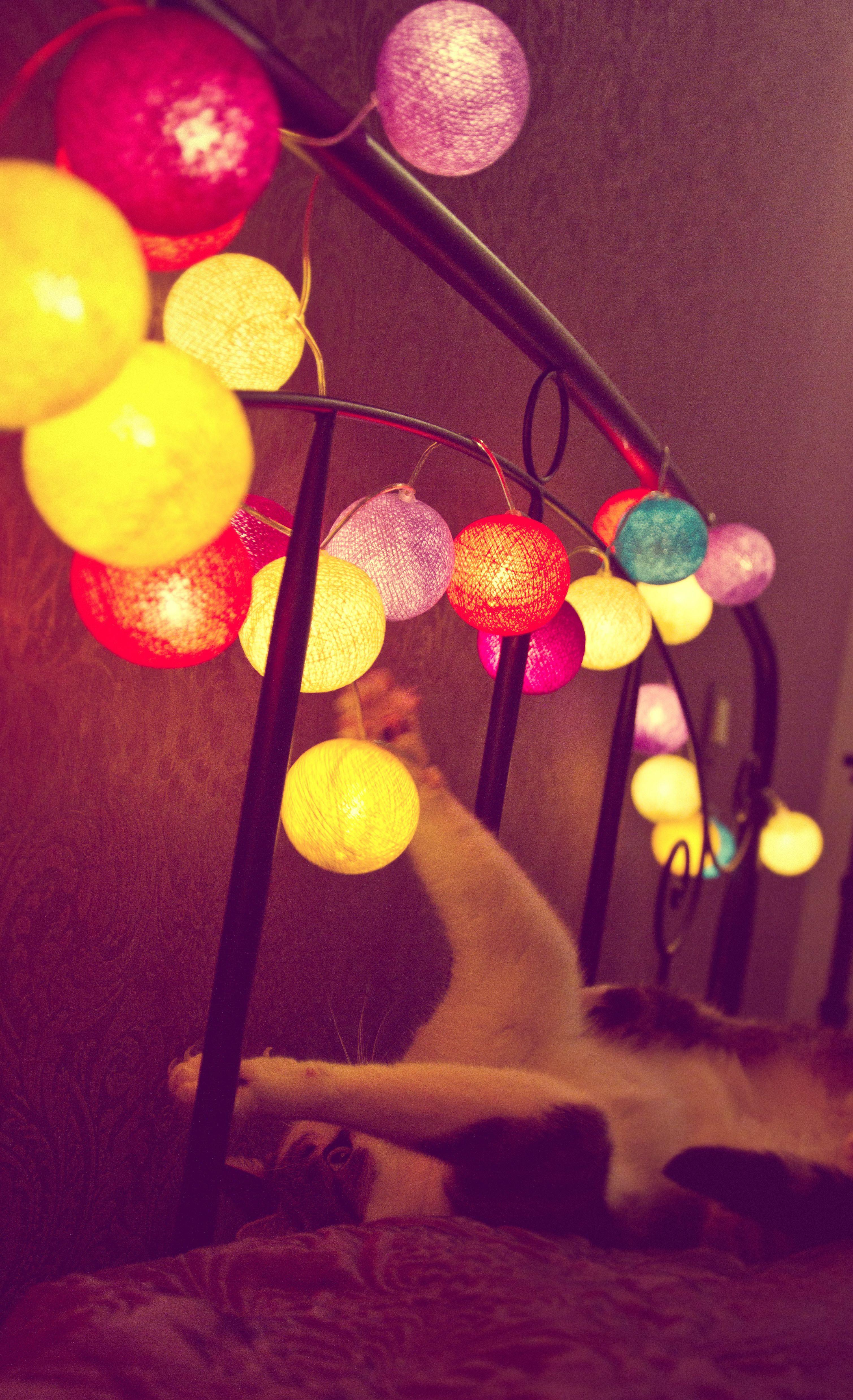 Decorative Ball Lights Cotton Ball Lights  Products I Love  Pinterest  Cotton Ball