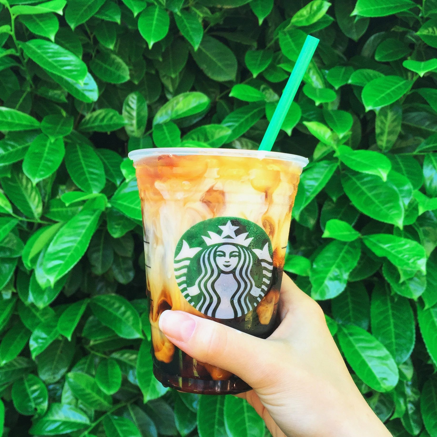 pinterest universexox ♏ Healthy starbucks drinks