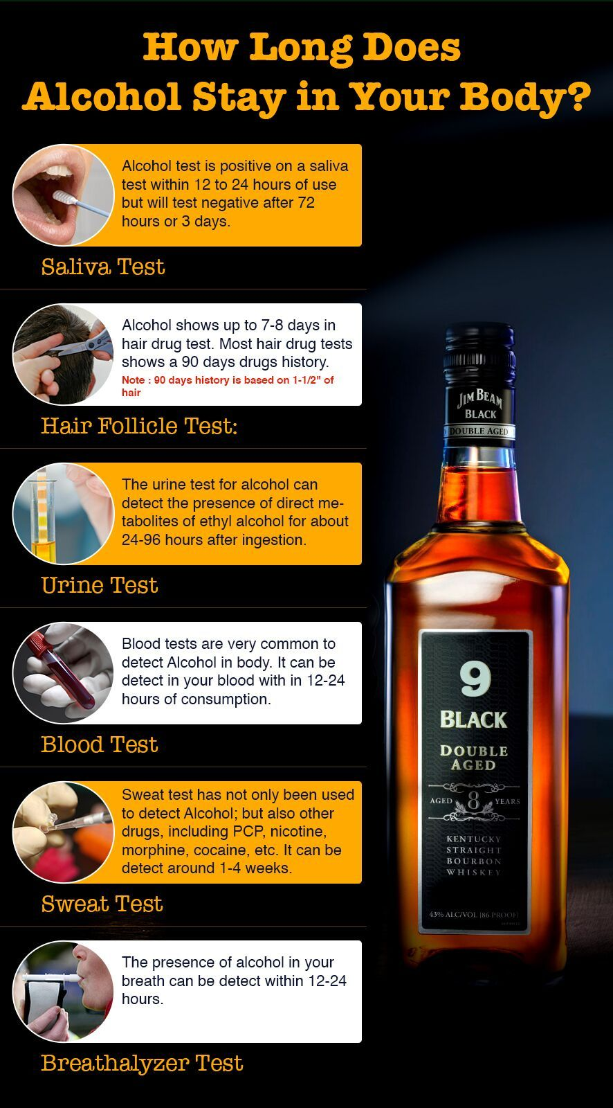 how long does alcohol stay in your system? wanna know? | funny n