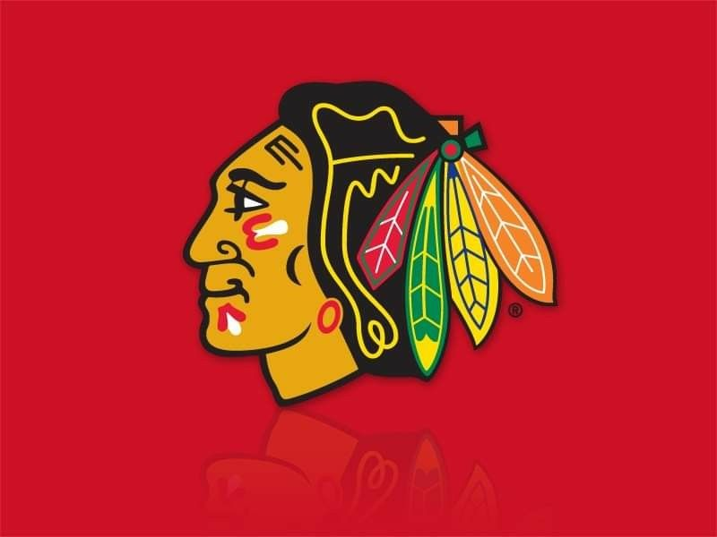 Pin by Sean Gray on Chicago Blackhawks Round area rugs