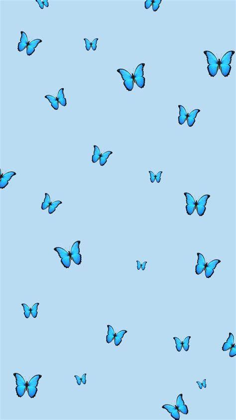 Blue Butterfly Wallpaper | Blue Butterfly Wallpaper