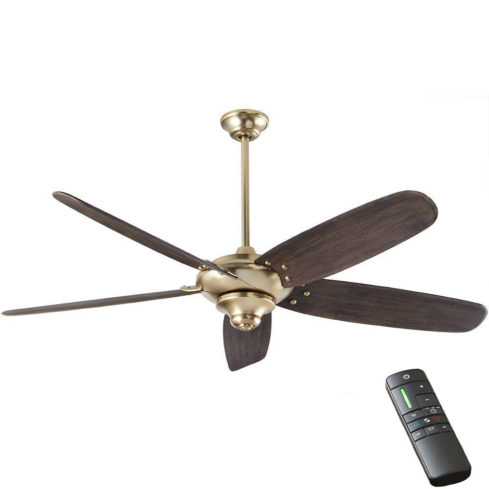 Black And Gold Ceiling Fan Home Decorators Collection Altura Dc 68 In Indoor Brushed Gold