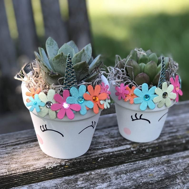 Diy succulent kit unicorn succulent crafts for kids etsy