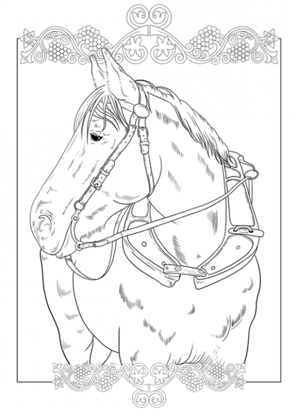 Free Draft Horse Colouring Page Horse Coloring Pages Horse Coloring Coloring Pages