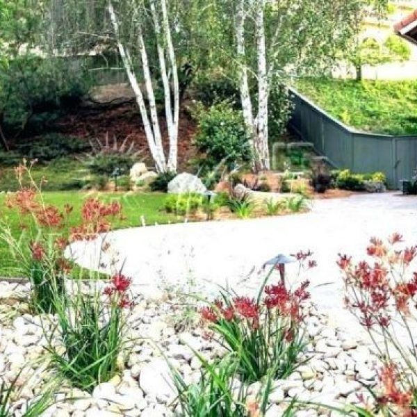 Drought Tolerant Front Yard: 42The Appeal Of Low Maintenance Front Yard Landscaping