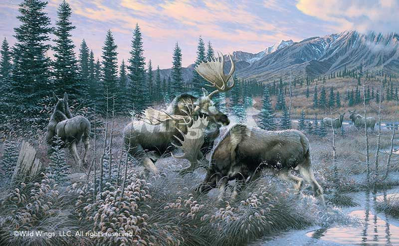 """Cynthie Fisher /""""Alaskan Royalty/"""" Moose Mountain Print Signed and Numbered"""