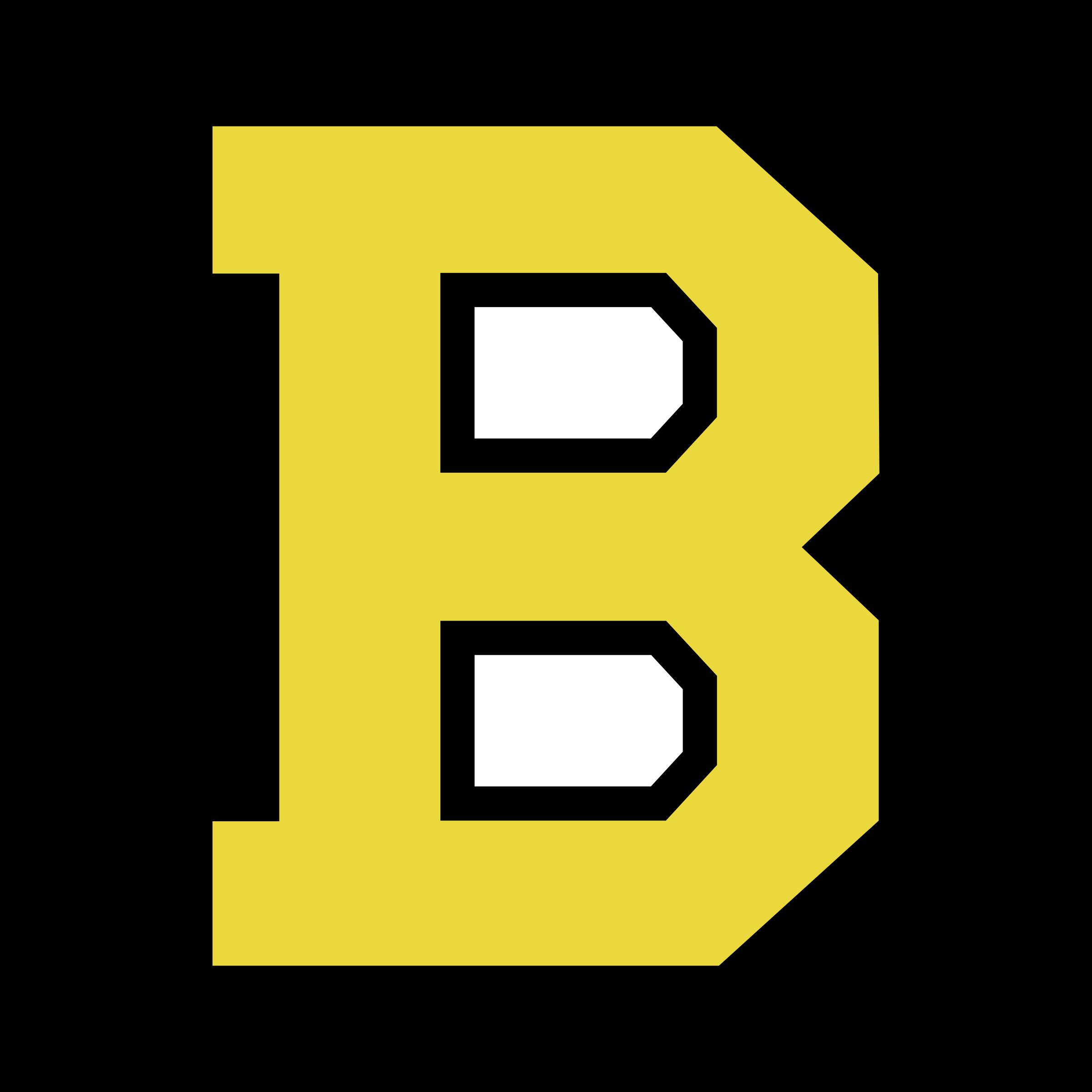 Image Result For Boston Bruins Logo Png Boston Bruins Logo Boston Bruins Bruins
