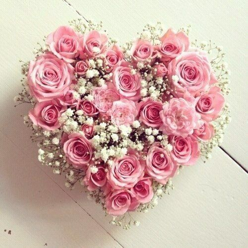 A Most Beautiful Pink Roses Gypsophila Heart Of Flowers Lovely On