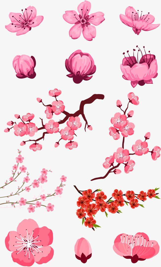 Pink,Flor de durazno,Flor,Petal,Simple,Hermosa,Originalidad,Flores ...
