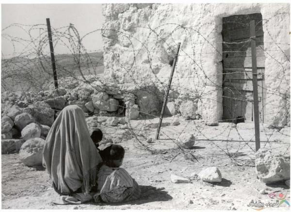 تعريف بالنكبة النكبة كلمة عربية وتعني الكارثة المصيبة في يوم الخامس عشر من أيار مايو عام 19488 حدثت نكبة الفلسطينيين وتد Pictures Palestine Palestinian