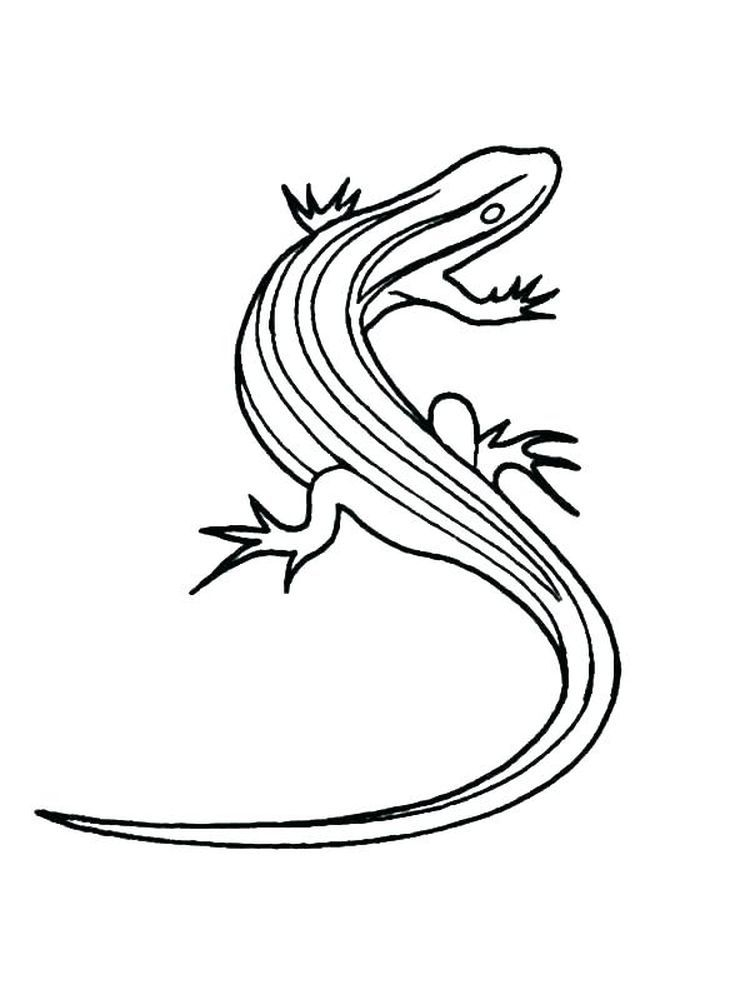 Baby Lizard Coloring Pages Lizards Are Four Legged Scaly Animals That Belong To The Reptile Group Online Coloring Pages Animal Coloring Pages Coloring Pages