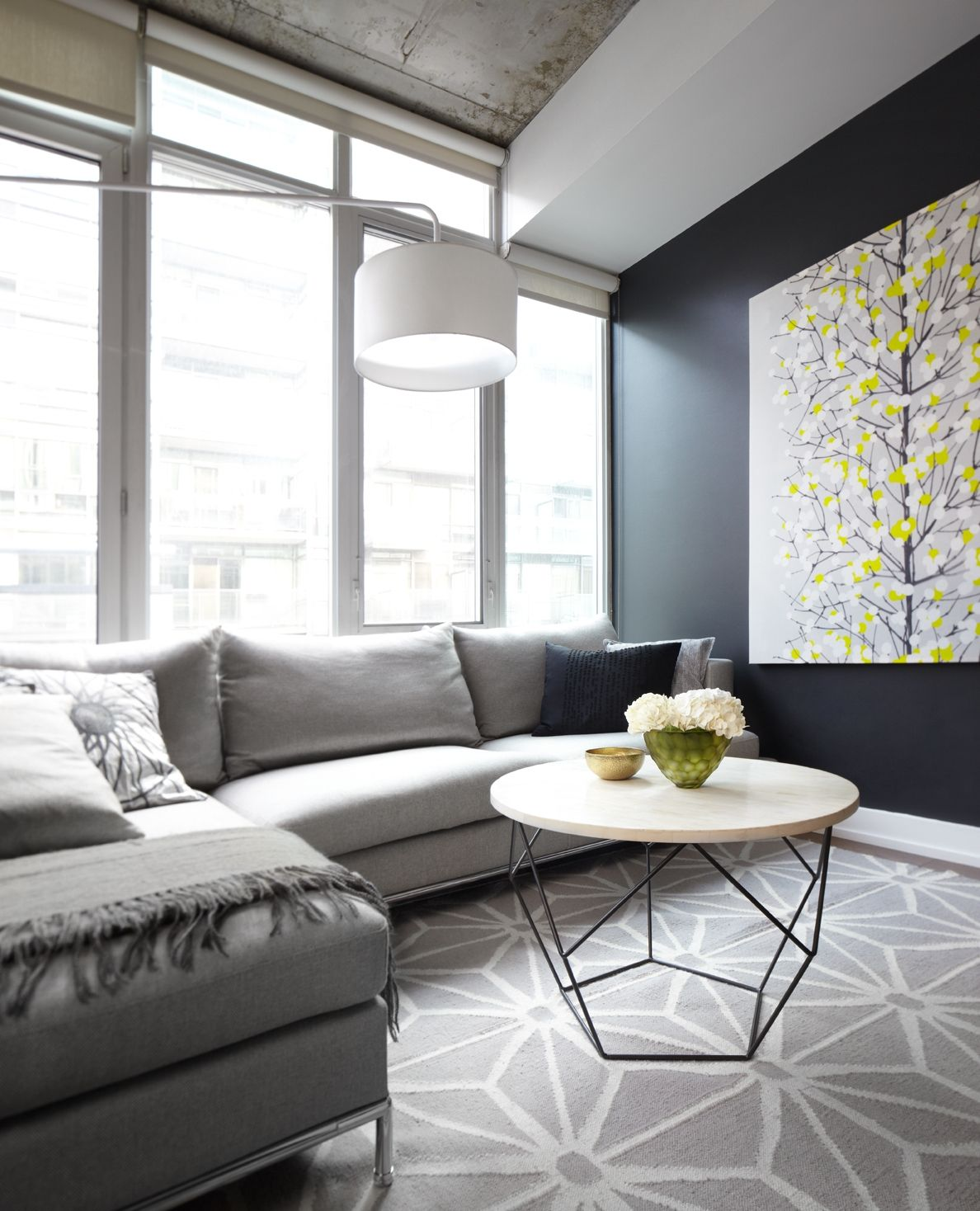 Perfect Contemporary Condo Living Room With Gray Sofa, Geometric Area Carpet And Black  Feature Wall   Part 31